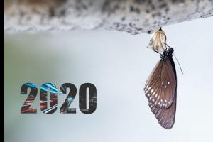 Más transformación digital para 2020