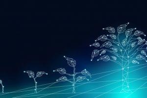 XaaaS, UX/CX y privacidad: Tendencias de la Transformación Digital no tecnológicas en 2020