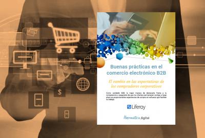 Imagen de la publicación Buenas prácticas en el comercio electrónico B2B