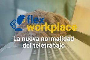Flex workplace: el modelo para definir el nuevo puesto de trabajo y teletrabajo digital