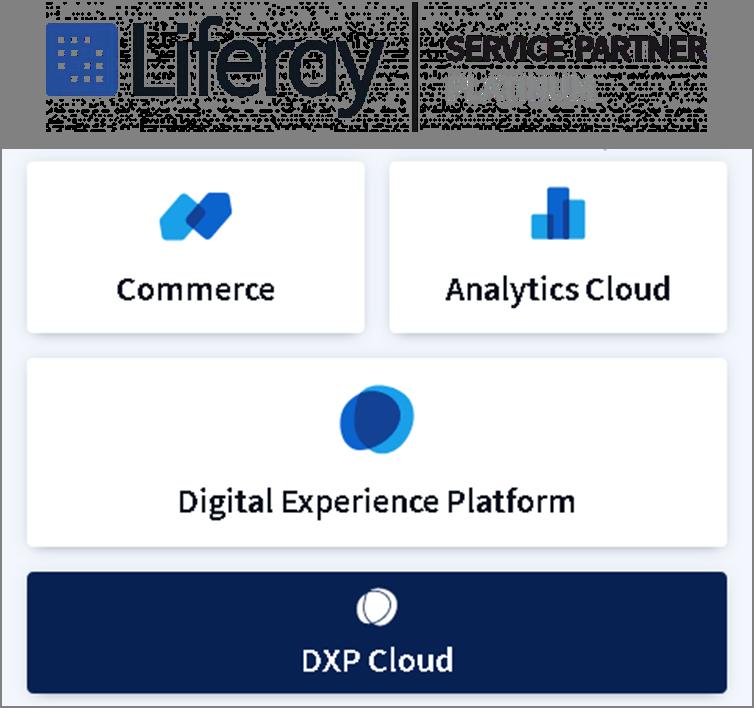 service partner platinum con esquema liferay